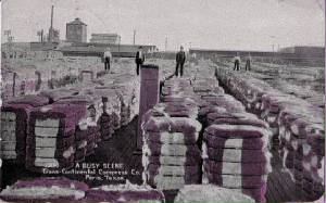 a-cotton-bales.jpg
